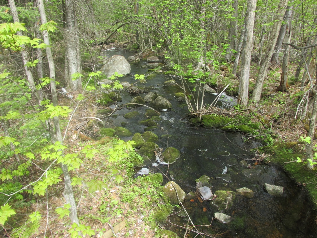 east branch Search east branch real estate property listings to find homes for sale in east branch, ny browse houses for sale in east branch today.